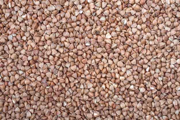 Graines de sarrasin sèches. alimentation équilibrée. fond de texture de grain