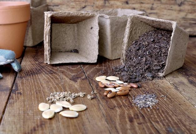 Graines et seau pour semis
