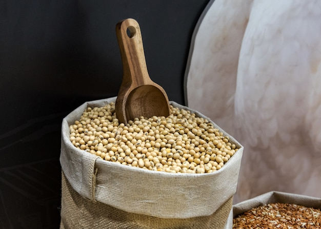 Graines de soja fraîches dans un sac en tissu rustique