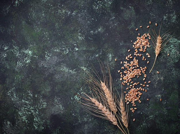Grains de blé et épillets sur fond rouillé.