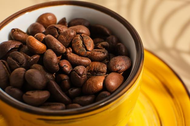 Grains de café arabica dans une tasse jaune exotique vif sur une surface beige avec des ombres d'un palmier
