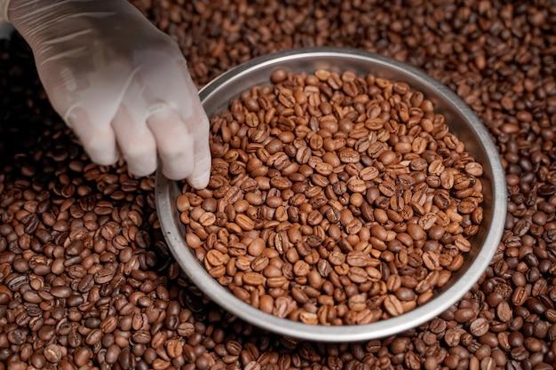 Grains de café arabica torréfiés, cuits au four et classés