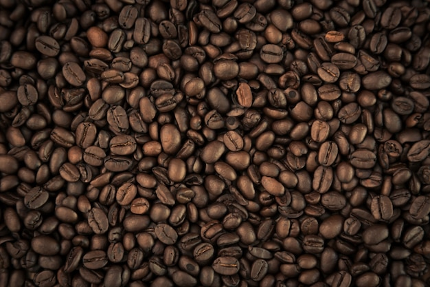 Les grains de café close up