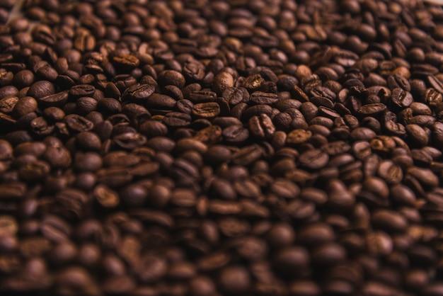 Grains de café close-up