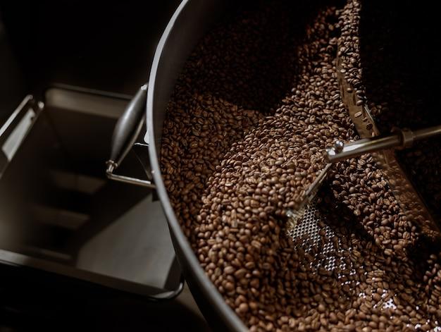 Grains de café dans le bac de refroidissement de la machine à torréfier le café