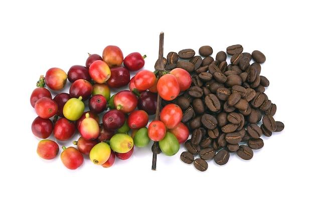 Grains de café frais isolés sur blanc