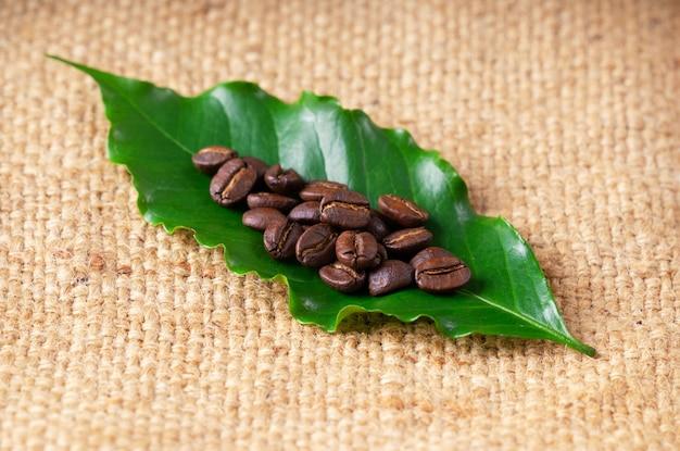 Grains de café grillés sur un sac en lin