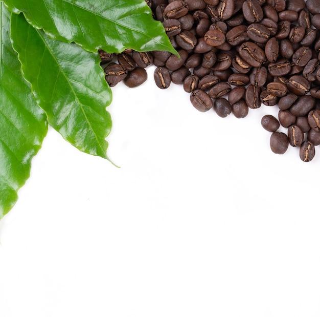 Grains de café torréfiés avec congé sur blanc