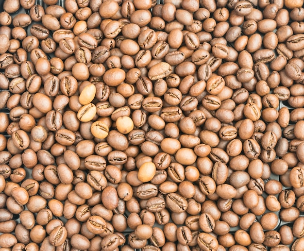 Grains de café torréfiés moyens