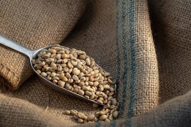 Grains de café vert crus dans un sac avec une cuillère