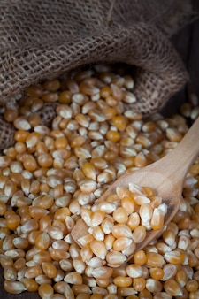Les grains de maïs secs sur une cuillère en bois avec sont déversés du sac de chanvre sur la table en bois.