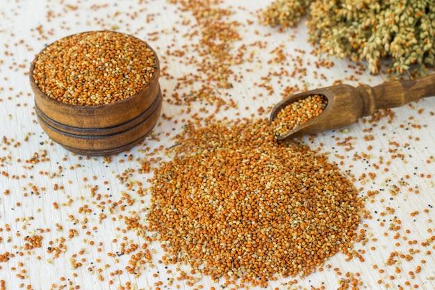 Grains de millet sur une cuillère en bois et dans une boîte. brindilles de mil
