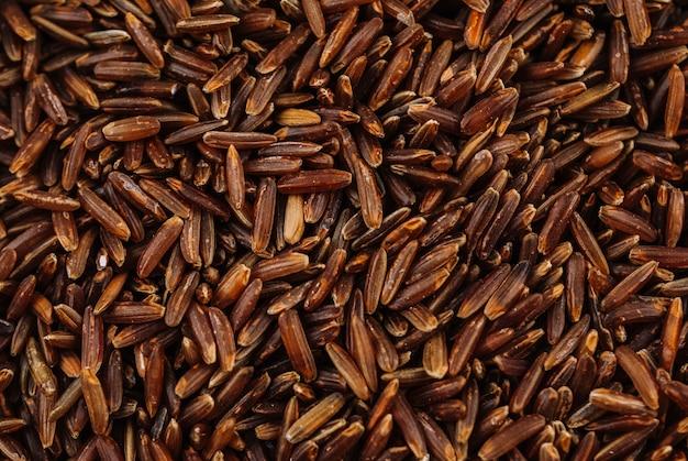 Grains de riz brun