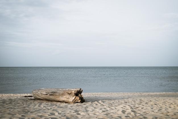 Le grand bois au bord de la mer pour s'asseoir et regarder la vue sur la mer