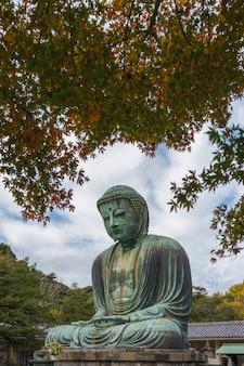 Grand bouddha de kamakura (kamakura daibutsu) dans le temple de kotokuin