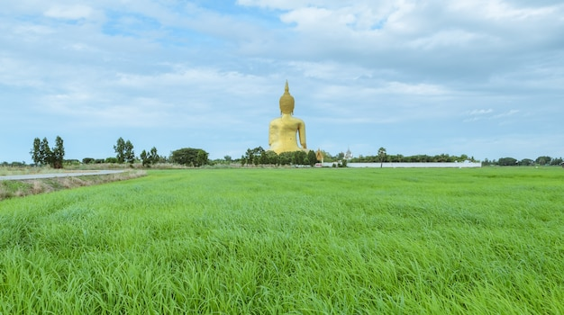 Grand bouddha de thaïlande, la plus haute statue de thaïlande