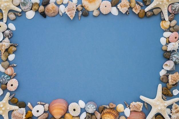 Grand cadre de variété éléments marins