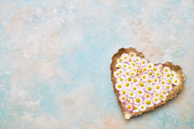 Grand coeur de fleurs de marguerite sur fond bleu pastel. espace de copie, vue de dessus. fond de vacances.