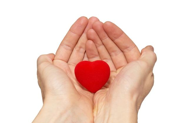 Grand coeur saint-valentin en mains isolé sur blanc