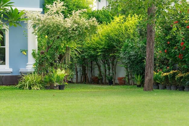 Un grand jardin d'herbe, des plantes et des fleurs décorent la maison.