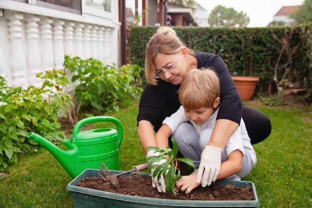 Grand-mère aide son petit-fils à planter des fleurs dans le sol