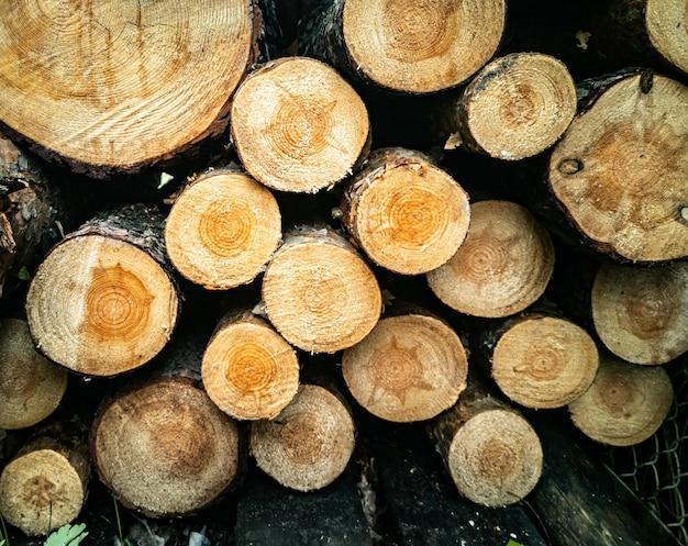 Grand mur de bûches de bois empilées montrant le concept de déforestation de décoloration naturelle