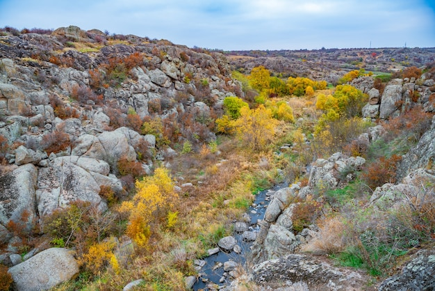 Un grand nombre de minéraux de pierre recouverts de végétation verte au-dessus d'une petite rivière