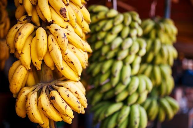 Un grand paquet de bananes jaunes et vertes sur une branche dans un paquet, accroché à l'étal du marché