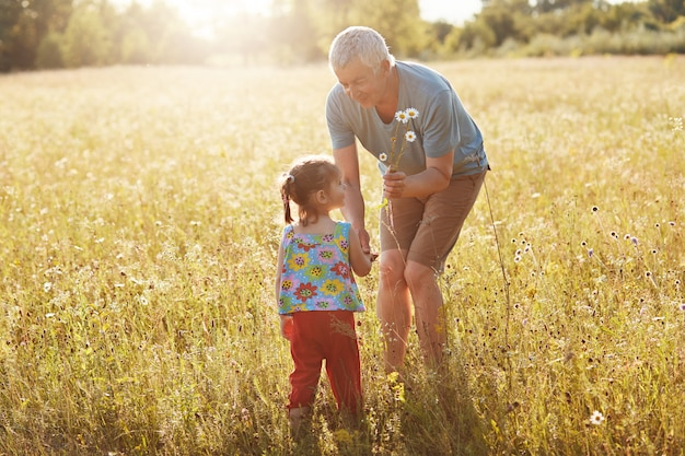 Le grand-père affectueux passe du temps libre avec sa petite-fille, se promène ensemble sur un terrain vert, ramasse des camomilles, a de bonnes relations. enfants et personnes âgées. concept de génération