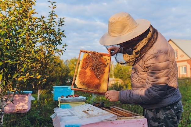 Le grand-père apiculteur expérimenté enseigne à son petit-fils le soin des abeilles. apiculture. le concept de transfert d'expérience.