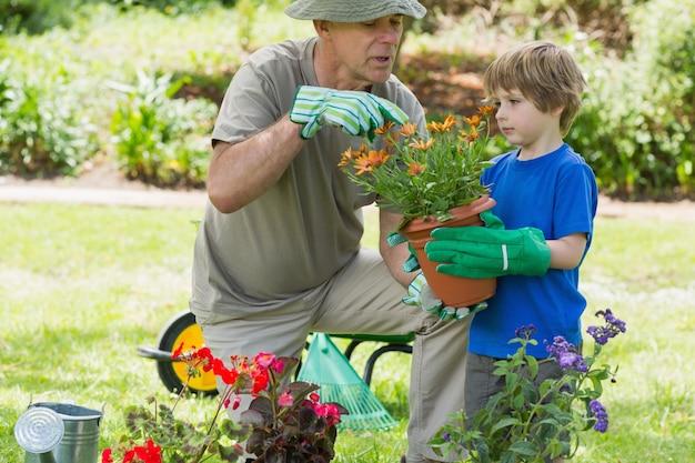Grand-père et petit-fils engagés dans le jardinage