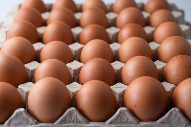 Grand plan, de, cru, oeufs poulet, dans, boîte oeuf, nourriture organique, depuis, naturel
