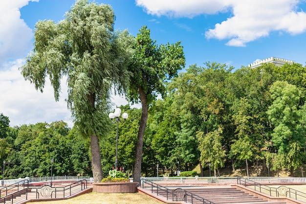 Grand saule pleureur, également connu sous le nom de saule babylonien dans un parc de la ville sur les merveilles du ciel - gomel, biélorussie.