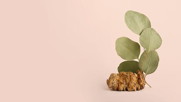Grande bannière horizontale avec branche naturelle verte et pierre décorative. espace vide pour objets publicitaires. fond pastel, tons de terre.
