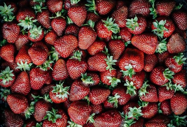 Une grande boîte de fraises mûres et belles. baies.