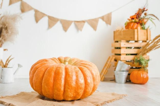 Grande citrouille sur fond blanc décor d'automne avec des caisses en bois et des épillets secs