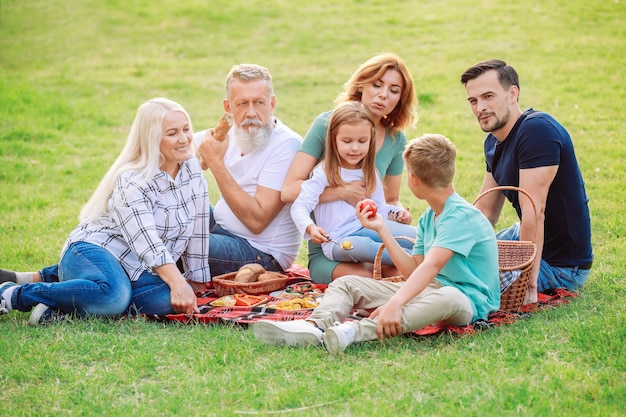 Grande famille ayant pique-nique dans le parc