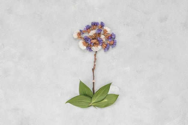 Grande fleur bleue sur table grise