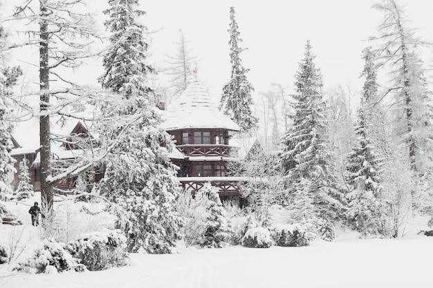 Grande maison en bois dans les bois enneigés