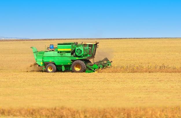 Grande moissonneuse-batteuse travaillant sur un champ de blé