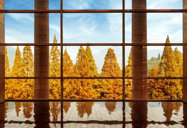 Les grandes fenêtres de l'architecture moderne