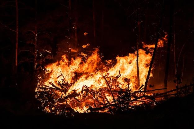 De grandes flammes d'incendies de forêt la nuit. flammes intenses d'un incendie de forêt massif