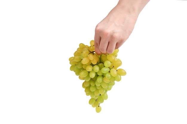 Grappe de raisin blanc en mains isolé sur blanc