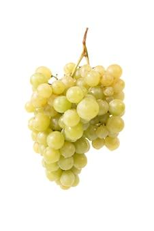 Grappe de raisin isolé sur fond blanc