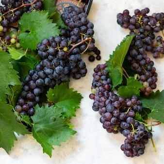 Grappe de raisin noir sur fond clair