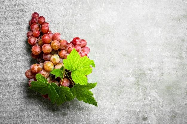 Grappe de raisin rouge.
