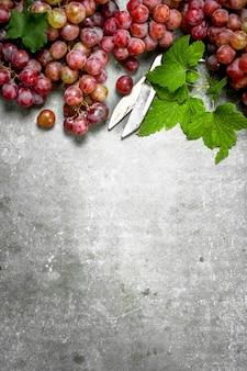 Grappes de raisins rouges avec des feuilles sur table en pierre.