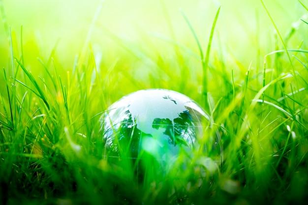 Green & eco environment, globe de verre dans le jardin