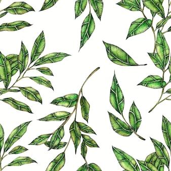 Green leaf seamless pattern main peiné à l'aquarelle