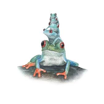 Grenouille verte empilée sur une illustration aquarelle de roche isolée